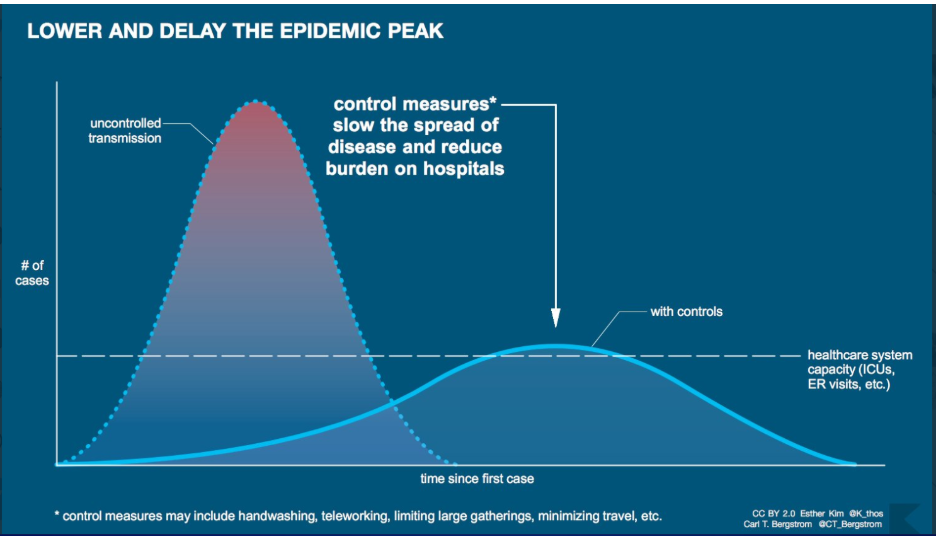 A graph showing two curves and a dotted line representing the healthcare system's capacity running horizontally. One curve rises high above that line and peters out quickly; the other is a longer curve that goes on longer but peaks later and just brushes the capacity line.